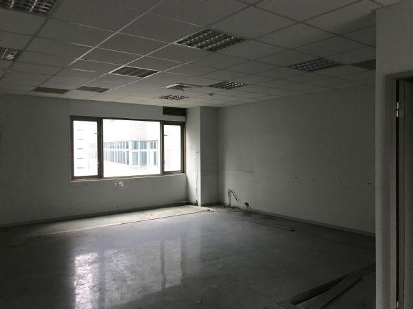瑞光路258巷超值辦公室09251055台北市內湖區辦公室出租-照片2